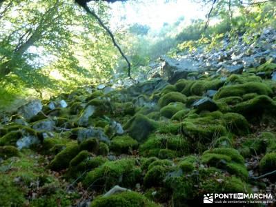 Yacimientos Atapuerca - Sierra de la Demanda; senderismo nivel alto hiking free